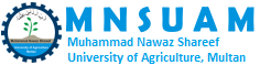 MNS-University of Agriculture Multan